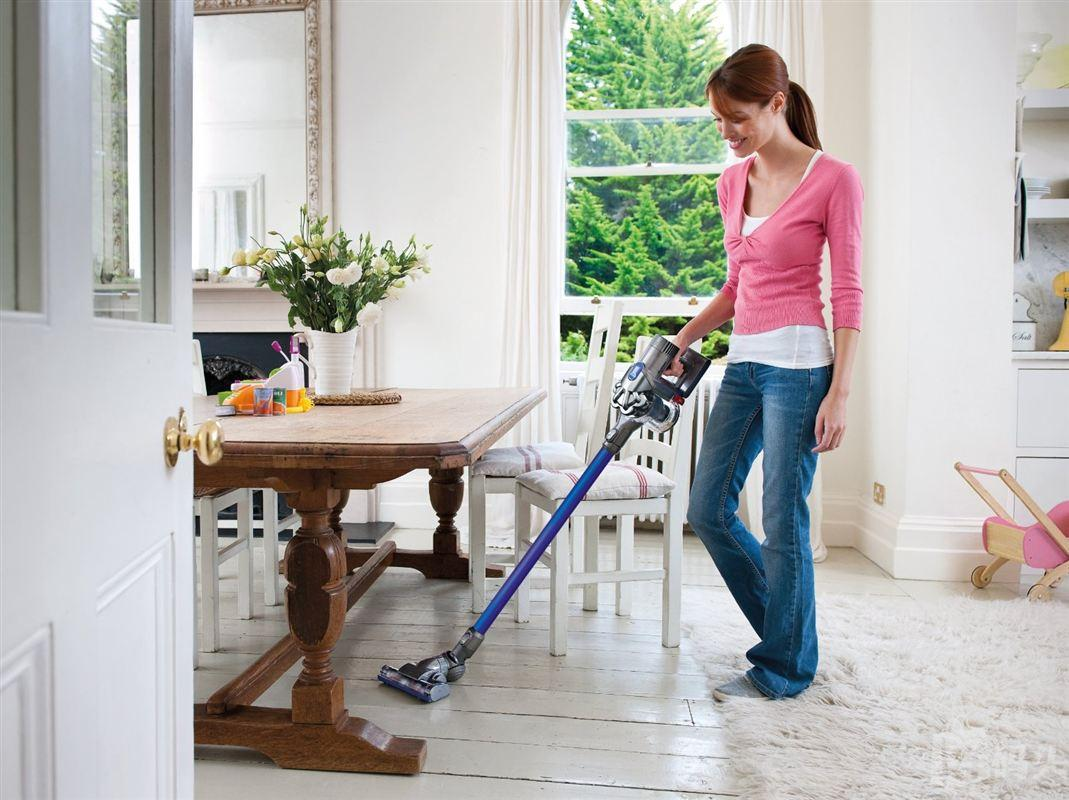 Dyson DC44 Animal Digital Slim吸尘器